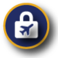 Icons_Aviation-Security-Icon